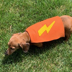 Make superhero capes for dogs to donate